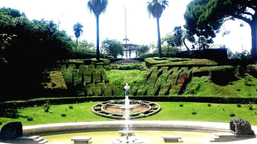 Catane giardino