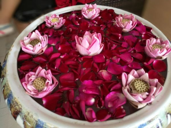 Flower Pink Color Bowl Petal Freshness No People Pitaya Close-up Indoors  Peony  Nature Fragility Flower Head Healthy Eating Day