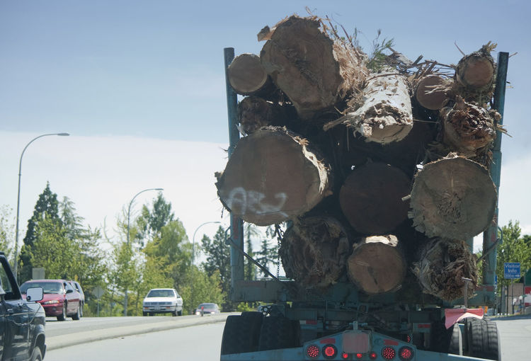 Truck with Logs on Highway - Vancouver Island, British Columbia, Canada Canada Climate Change Close-up Dead Tree Deforestation Environment Environmental Issues Forestry Industry Freight Transportation Global Warming Highway Highways&Freeways Land Vehicle Lumber Industry Rear View Road Semi-truck Timber Traffic Transportation Tree Tree Trunk Truck Trucking Wood - Material