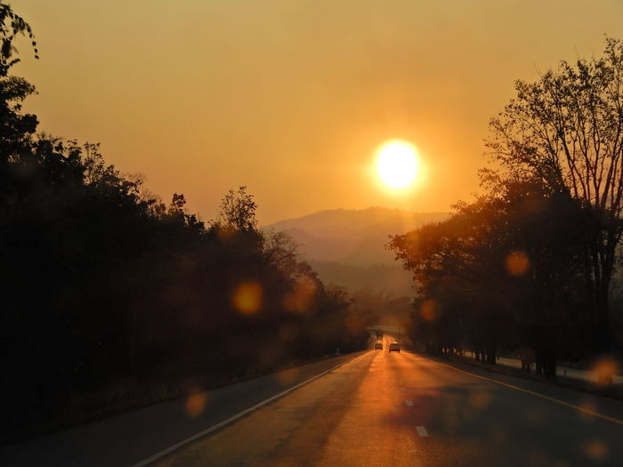 Sunset Tree Sky