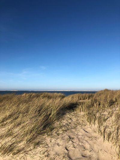 Dunes Sky Land