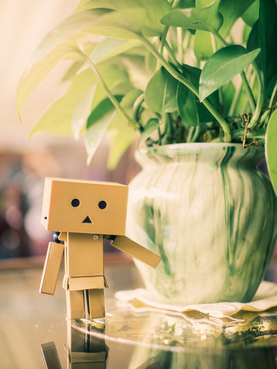 Close-up of danboard by vase