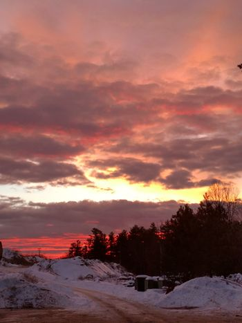 Good morning, or good day, to you all!!!!!! 🤗🤗 Sunrise Sillouette Unedited Unfiltered Snow ❄ Tree Winter Dramatic Sky Landscape Cloud - Sky Orange Color Beauty In Nature Cold Temperature Tranquil Scene Snow Outdoors Sunlight Awe Sky Red Scenics