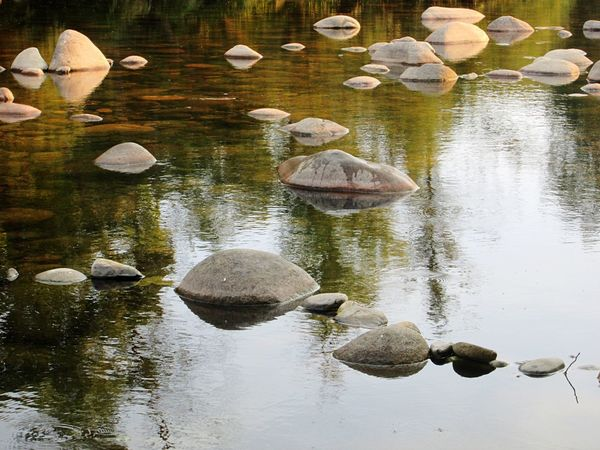 Rio Paiva, Portugal Reflection Water Lake No People Nature Outdoors Beauty In Nature Swimming Day Reflection Nature Photography Travel Destinations EyeEm Nature Lover Portugaloteuolhar Portugal_em_fotos Travel Paiva Tranquil Scene Travel Photography Stones