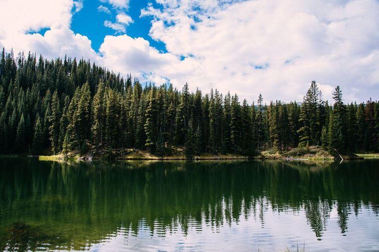 Nature Canada Rocky Mountains Rockies Banff National Park  Banff  Jasper Jasper National Park Lake Louise  Mountains Wildlife