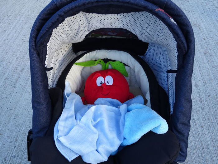 Close-Up Of Toy In Baby Stroller