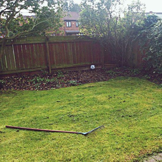 Garden needs some more work. First Eyeem Photo