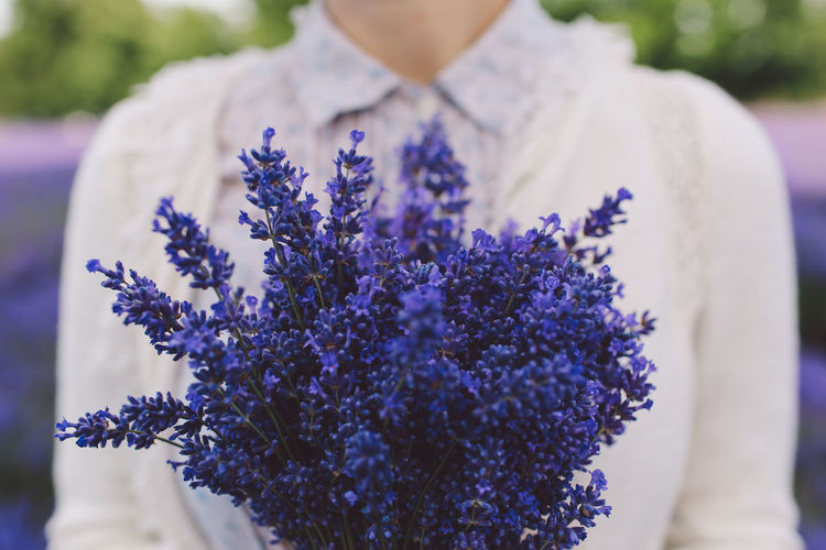 Beauty In Nature Blooming Bouquet Casual Clothing Close-up Day Flower Focus On Foreground Fragility Growth Lavanda Lavande Lavander Lavander Flowers Nature Outdoors Part Of Petal Pink Color Selective Focus Visual Creativity Moms & Dads