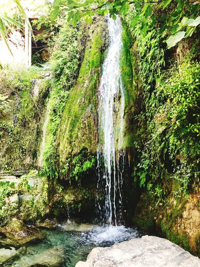 Waterfall Water Motion Nature Day No People Sunlight Plant Waterfall Green Color Flowing Water Scenics - Nature Falling Water