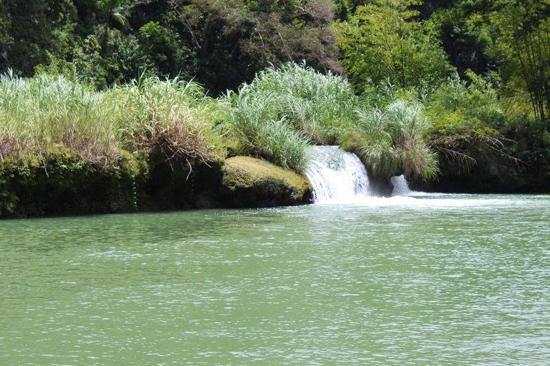 Loboc river,