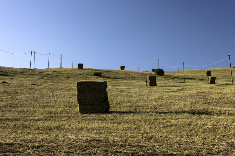 alfalfa bales Alfalfa Field Alfalfa Bale Environment Grass Field No People Outdoors Nature Landscape Land Hill Rolling Landscape Agriculture Fodder Countryside Full Frame High Definition Pile Electricity  Environmental Conservation Tranquil Scene Horizon Over Land Plant Rural Scene