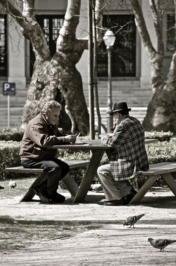 Bench Chess Elderly Leisure Activity Lisbon Park Portugal Retirement