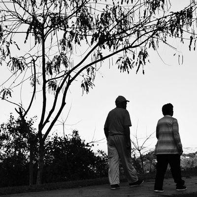 Y caminar junto a ti, por el resto de nuestras vidas... Insta_bwgramers Instabyn_ve Instabw_ve IgersVenezuela_byn igerscaracas igersmiranda igersvenezuela instapro_ve icu_venezuela edits_bnw icc_venezuela
