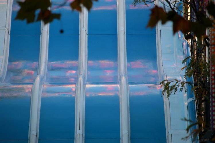 Slide Blue Slide Reflection In Slide Blue Pink Color EyeEm Selects Tree