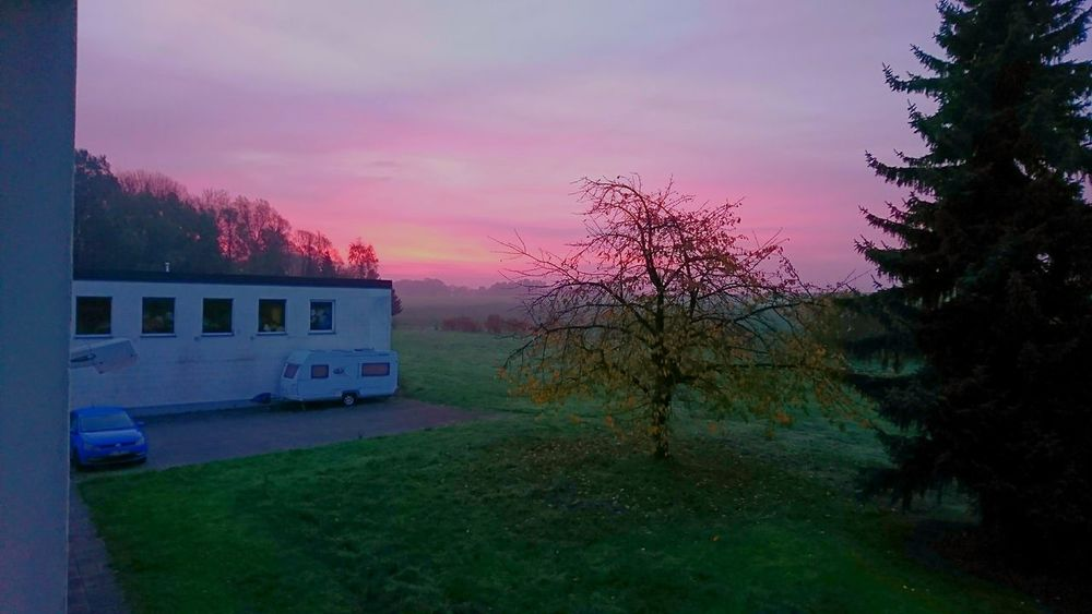 Sky No People Grass Outdoors Tree Morning Red Sky Bad Salzuflen Perspectives On Nature