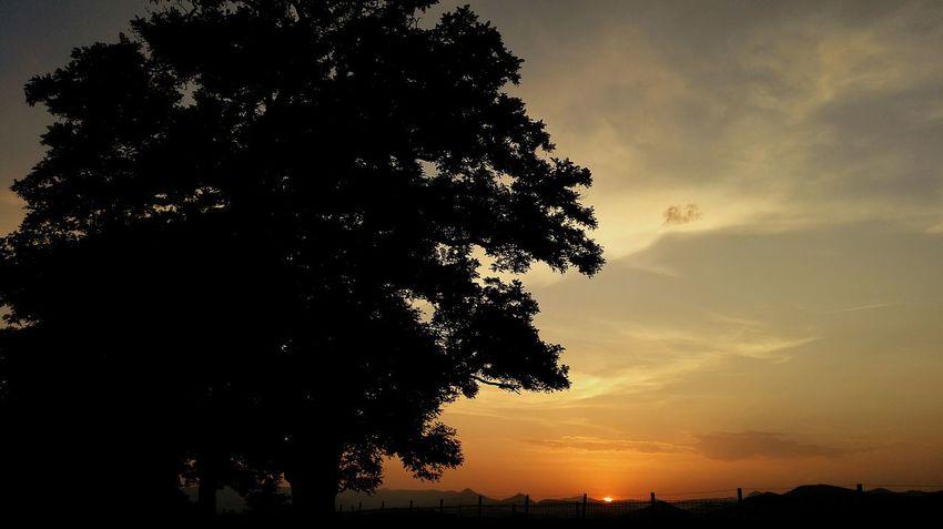 Atardecer / Sunset Somosfelices OpenEdit Walking Around Streamzoofamily Silhouette Sunset