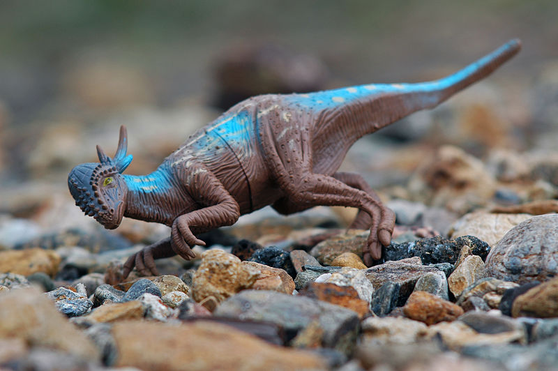 Close-up ofpladtic  dinosaur toy on rock