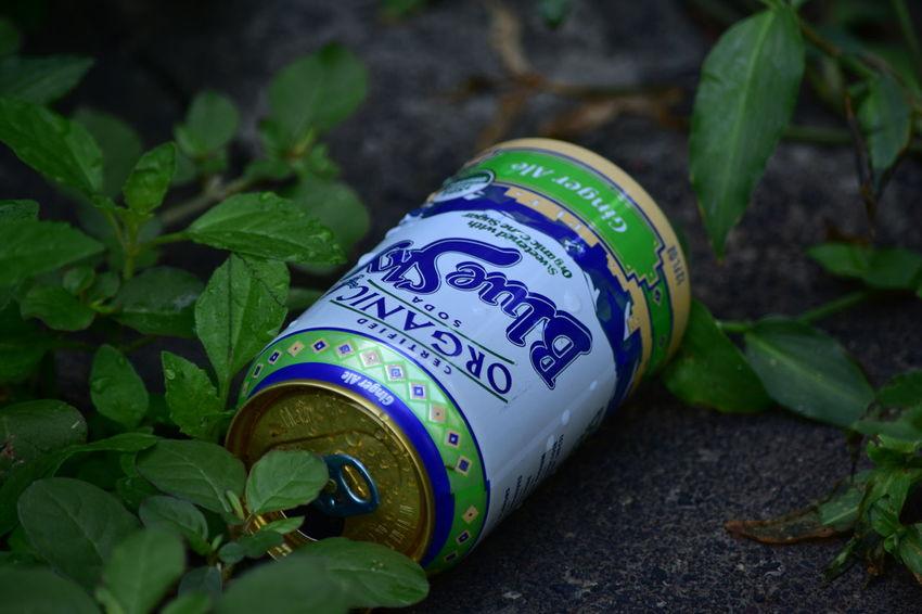 Blue Sky Drink El Salvador Impresionante Nature Nikon Photography Recicle