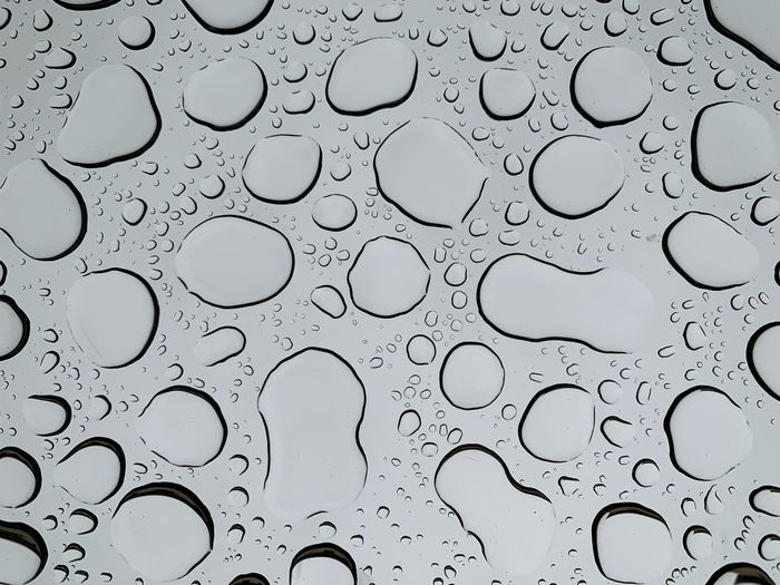 water drops on