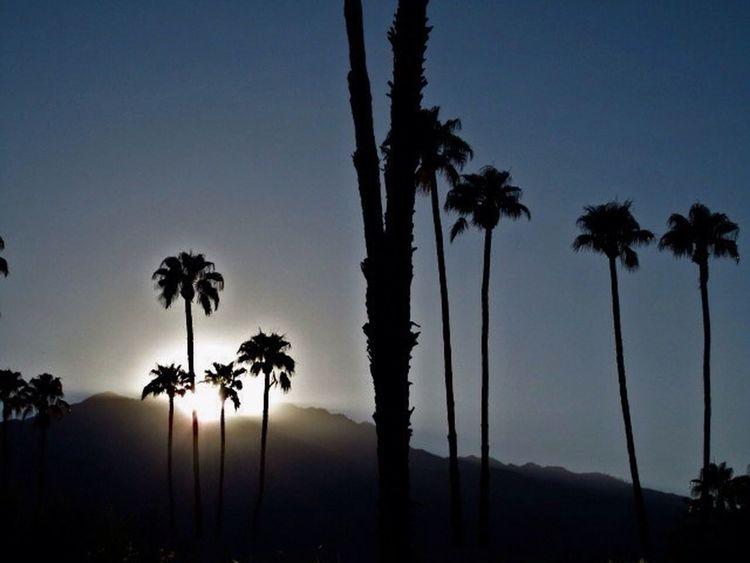 Palm Springs / Sept 12