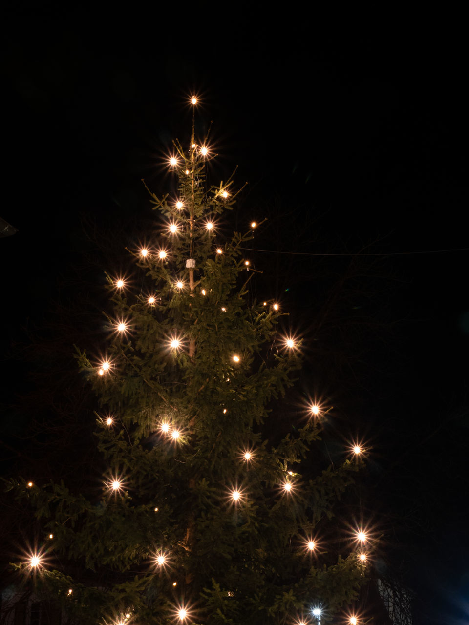 illuminated, celebration, night, decoration, lighting equipment, christmas, no people, glowing, light, christmas lights, holiday, tree, christmas decoration, christmas tree, nature, low angle view, plant, event, sky, christmas ornament