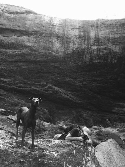Falling Rock Falls Black & White Dogs Alabama Dry falls in Montevallo AL