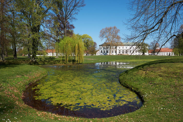 neuhardenberg palace and park against blue sky Plant Tree Water Nature Architecture Built Structure Grass No People Day Sky Green Color Park Growth Tranquility Lake Beauty In Nature Building Exterior Outdoors Reflection Hedge Neuhardenberg Spring Oderbuch Brandenburg Schinkel Countrside Neuhardenberg Palace Springtime Spring Is Coming  Spring Is In The Air Palace