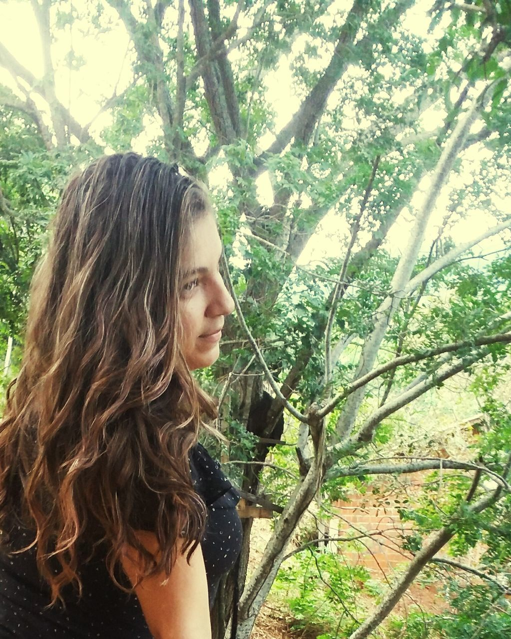 tree, real people, one person, young adult, leisure activity, young women, lifestyles, nature, day, forest, standing, long hair, outdoors, water, side view, tree trunk, beautiful woman, women, branch, beauty in nature
