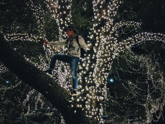 Low Angle View Of Man Standing On Illuminated Tree At Night