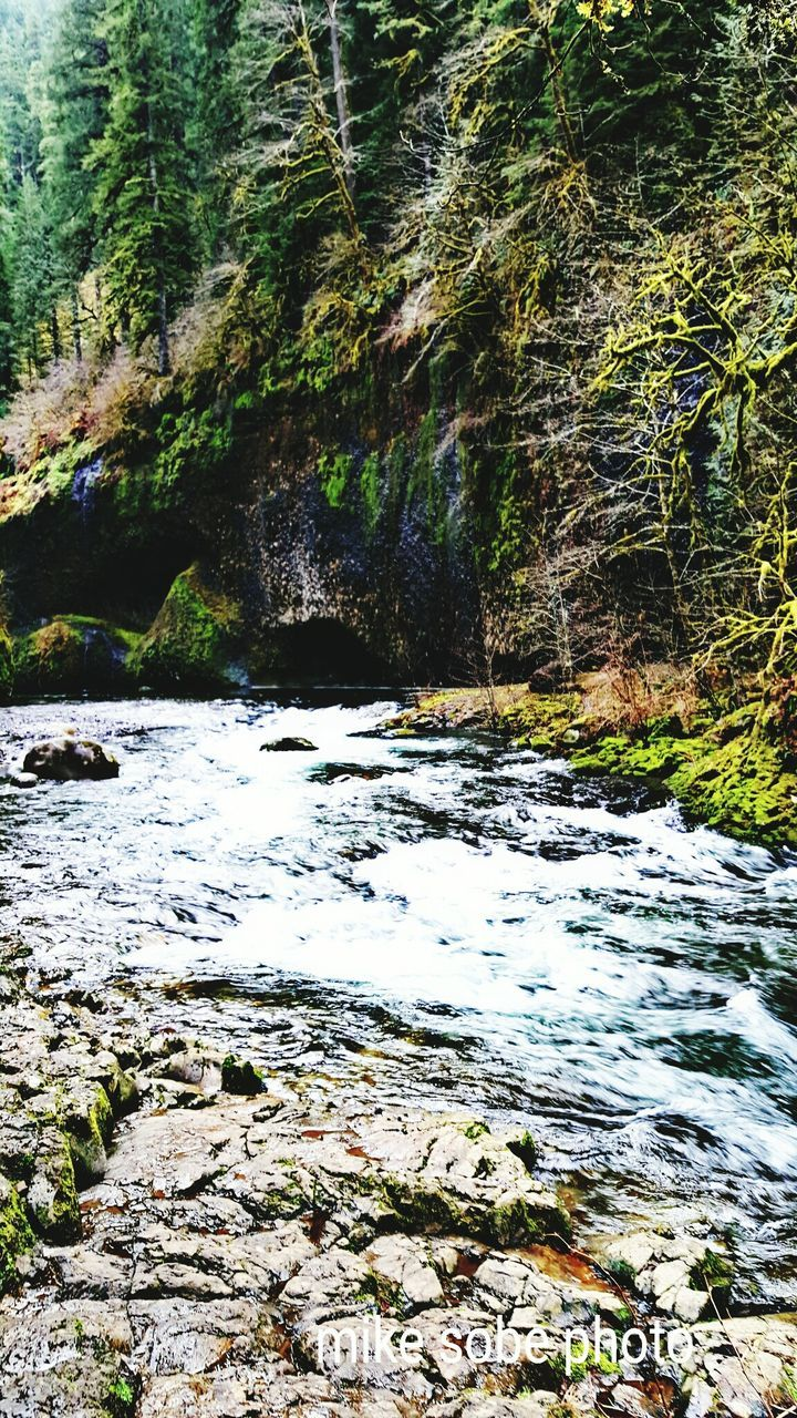 nature, beauty in nature, tranquility, tranquil scene, no people, water, scenics, outdoors, day, river, rock - object, waterfall, motion, tree, forest