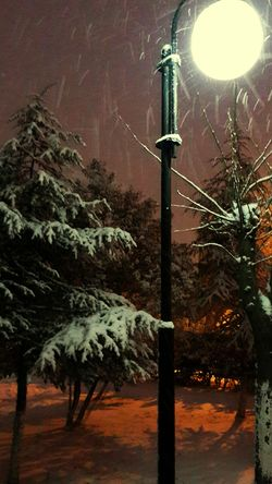 Snow ❄ Coldday The End Of The Day Winter Hagging A Tree Tree_collection  Evening Streetphotography Its Cold Outside