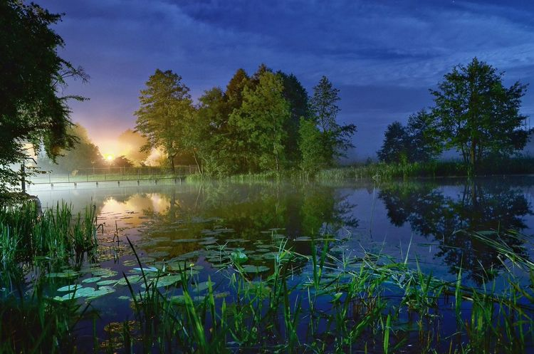 Reflection Lake Water Tree Nature Outdoors Scenics Beauty In Nature Tranquility Sky Tranquil Scene Plant Sunset Cloud - Sky Landscape No People Beauty Flood Day River Poland Warmia Night Nightscape Nightriver