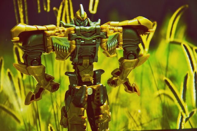 I used my laptop's wallpaper as backgroUnd TransformersMegatron Crazy Tricks Autobots Bumblebee Canon60d Canon Popular Photos Cool Stuff Amazing_captures