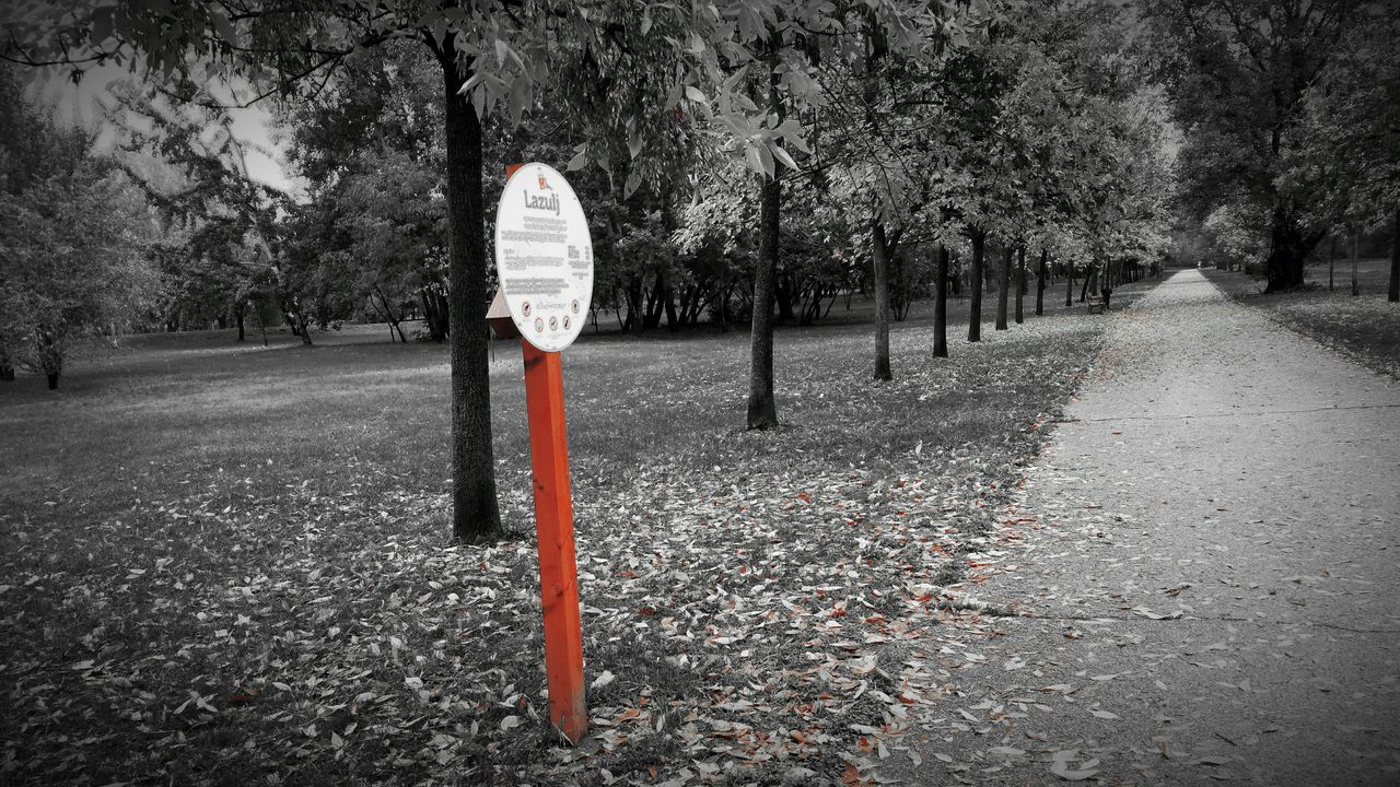 tree, outdoors, nature, day, red, road sign, no people, grass