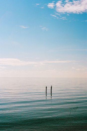 Silhouette people on sea against sky
