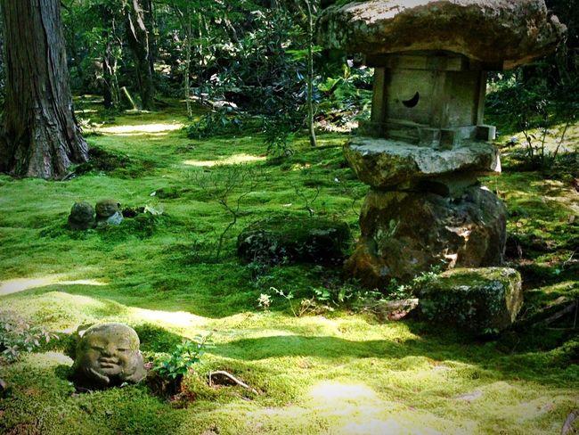 Kyoto Japan Sanzenin Sanzen In Green Temple Today 京都 日本 大原三千院 今日