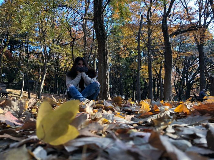 Woman sitting on autumn leaves in forest