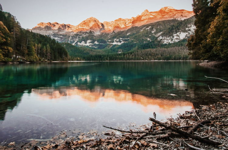 Sunrise in Tovel lake. Water Tree Mountain Tranquil Scene Reflection Lake Scenics Tranquility Mountain Range Beauty In Nature Nature Travel Destinations Non-urban Scene Majestic Geology Remote Calm Day Landscape Dolomiti Dolomiti Italy Sunrise