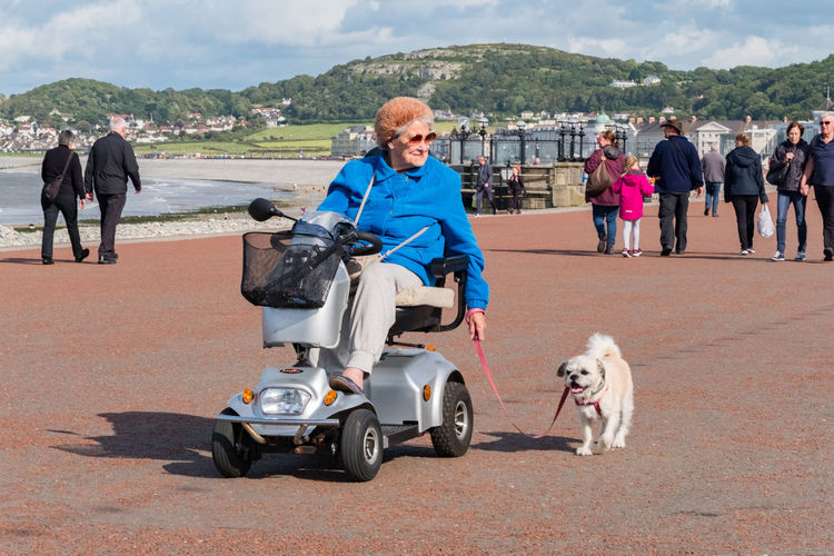 Woman on motorised mobility scooter with small dog on lead. Promenade, Llandudno, North Wales. Freedom Fresh Air Independence North Shire Promenade Sunny Transportation Disability  Dog Enjoyment Lifestyles Llandudno Mobility Mobility Scooter North Shore North Wales Outdoors Pet Real People Zest For Life ! (: The Week On EyeEm