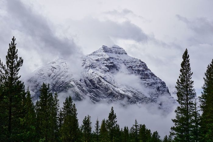 Low lying clouds in the mountains Apex Beauty In Nature Bleak Cold Temperature Day Fog Forest Landscape Low Cloud Over Mountain Mountain Mountain Peak Mountain Range Nature No People Outdoors Pine Woodland Pinnacle Scenics Sky Snow Snow Clouds Snowcapped Mountain Tree Winter