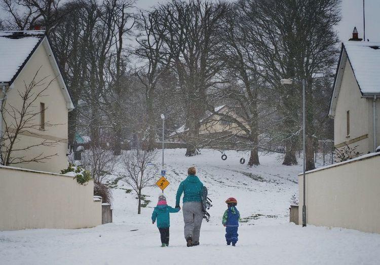 Snowy day in Ireland Snow Trees Cold Three Subjects Kids Ireland Wildatlanticway Limerick
