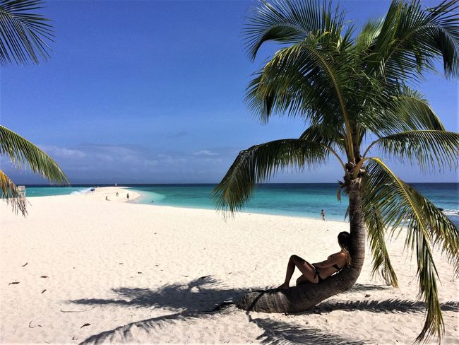 Beach Idyllic Kalanggaman Island Palm Tree Philippines Relaxing Sand Sea Tranquil Scene Travel Vacations Young Woman