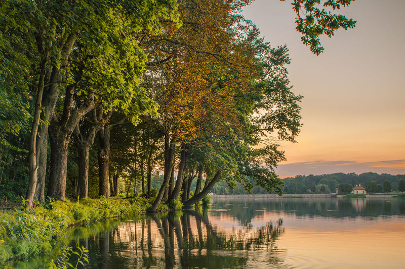 Architecture Beauty In Nature Branch Day Growth Lake Nature No People Outdoors Reflection Scenics Sky Sunset Tranquil Scene Tranquility Tree Water Waterfront