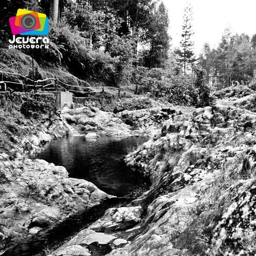 Telaga Sunyi (Baturaden, Purowkerto) Silent Lake Telaga Sunyi Danau Baturaden Banyumas Purwokerto JawaTengah Indonesia CentralJava Nature Landscape BlackAndWhite BW Travel FadeyJevera