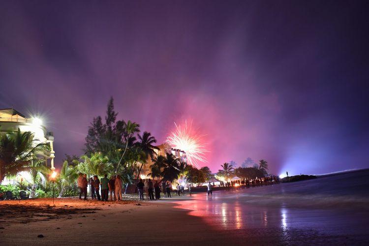 Panoramic shot of illuminated trees on beach against sky at night
