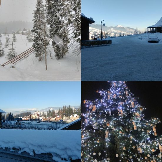 Winter Tree Snow Travel Destinations Christmas City Celebration Outdoors Building Exterior Christmas Tree Holiday - Event No People Cityscape Illuminated Night Skiing ❄ Eyem Best Shots Winterart Landscape Cold Winter ❄⛄ Vacation Vacation Time Bukovel Beauty In Nature Deep Snow