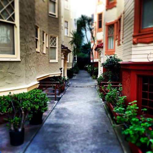 I love this alley First Eyeem Photo