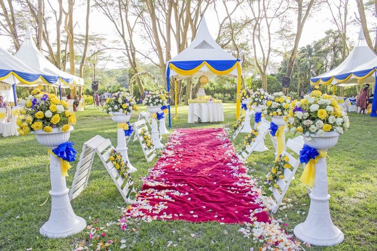Wedding Wedding Photography Wedding Details Weddings Around The World White Tent With Blue And Yellow Decoration Celebration Flower Garden Wedding Garden Wedding Decoration Grass Life Events Multi Colored Outdoors Red Carpet Event Red Carpet Event Perfect Mistake Red Carpet Wedding Wedding Ceremony Wedding Day Wedding Decoration Wedding Photos Wedding Reception :) Weddingphotography Weddings Yellow And Blue Wedding Decoration Yellow And White Wedding Roses