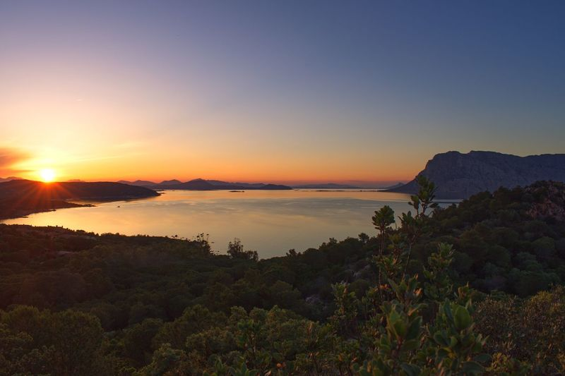 The sunset in beautiful Sardinia Summer Amazing View Sardinia Italy Vacation Sky Water Sunset Scenics - Nature Beauty In Nature Tranquil Scene Tranquility Sea Nature Plant Land Sun Idyllic Reflection Non-urban Scene Sunlight No People Outdoors
