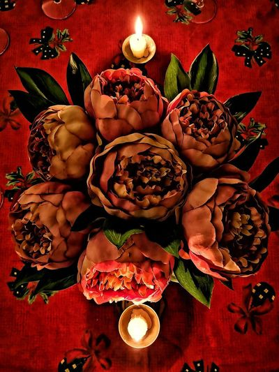 Flowers Flores Christmas Decoration Christmas Red Celebration Table Plate Close-up Food And Drink
